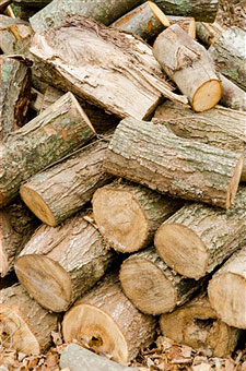 stack-of-firewood